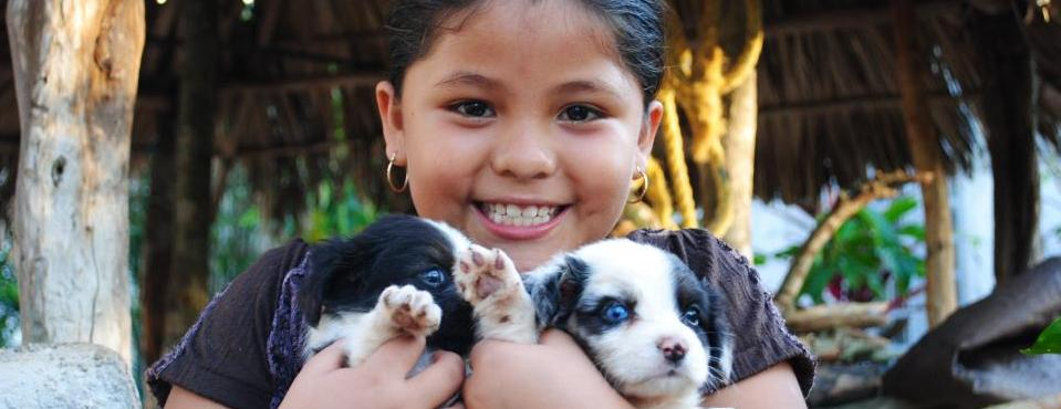 Pricilla plays with her puppies at the Mayan Children's Village